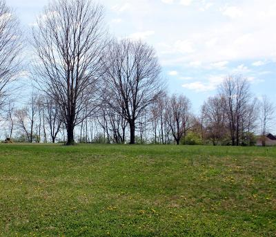Warren County Residential Lots & Land For Sale: 6 N Section Street