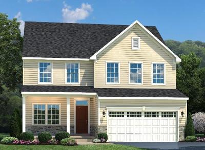 Single Family Home For Sale: 931 Trovillo Drive