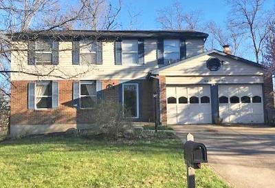 Single Family Home For Sale: 8473 Kilkenny Drive