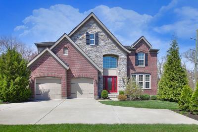Single Family Home For Sale: 10166 Elmfield Drive