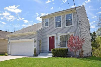 Single Family Home For Sale: 1353 Crotty Court
