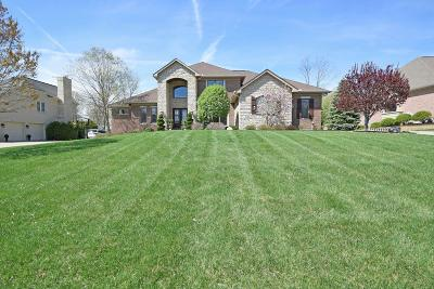 Single Family Home For Sale: 8512 Ivy Trails Drive