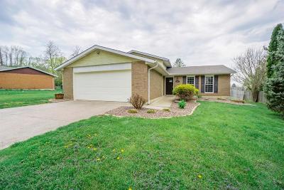 Single Family Home For Sale: 5810 Lake Michigan Drive