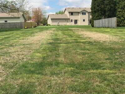 Clinton County Residential Lots & Land For Sale: Prairie Avenue
