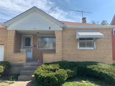 Cincinnati Single Family Home For Sale: 1724 Hillfred Lane