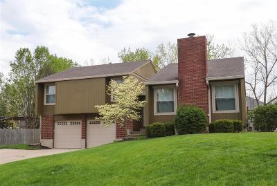 Liberty Twp Single Family Home For Sale: 6810 Netherland Drive