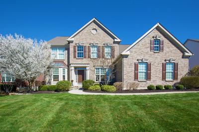 Deerfield Twp. Single Family Home For Sale: 3852 Blossom Court