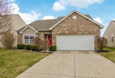 Hamilton County, Butler County, Warren County, Clermont County Single Family Home For Sale: 616 Quail Hollow Drive