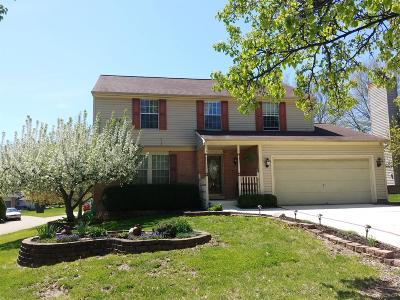 Warren County, Clermont County, Hamilton County, Butler County Single Family Home For Sale: 2727 Sheila Drive