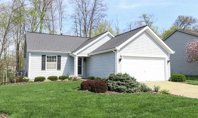 Hamilton County, Butler County, Warren County, Clermont County Single Family Home For Sale: 4583 Hallandale Drive