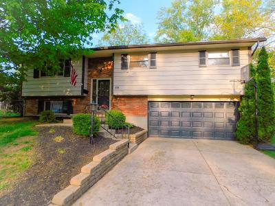 Montgomery County Single Family Home For Sale: 818 Lea Castle Place