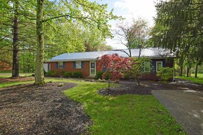 Clinton County Single Family Home For Sale: 156 Dudley Road