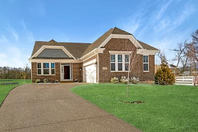 Clermont County Single Family Home For Sale: 3798 Fairmount Circle