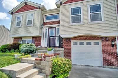 Warren County Single Family Home For Sale: 262 Long Meadow Drive