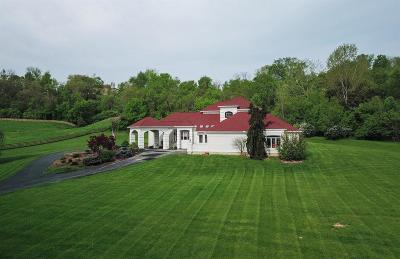 Harrison Twp Single Family Home For Sale: 10415 Walkingfern Drive