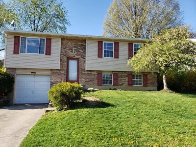 Delhi Twp Single Family Home For Sale: 4466 Valence Drive
