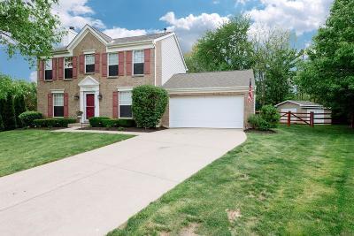Single Family Home For Sale: 4150 Bettyhill Lane