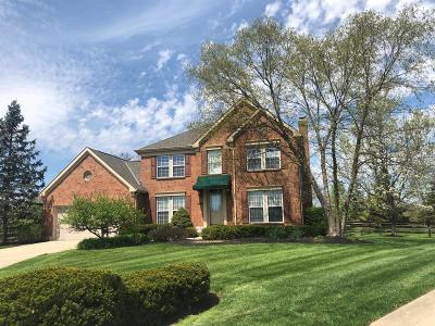 Single Family Home For Sale: 616 Shadowlawn Lane