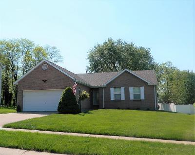 Hamilton County, Butler County, Warren County, Clermont County Single Family Home For Sale: 675 Davis Drive
