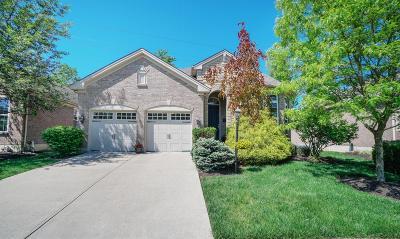 Loveland Single Family Home For Sale: 106 Eastbury Drive