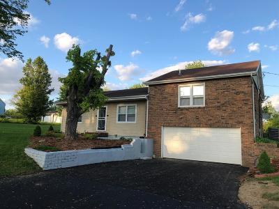 Clinton County Single Family Home For Sale: 307 Ogden Road