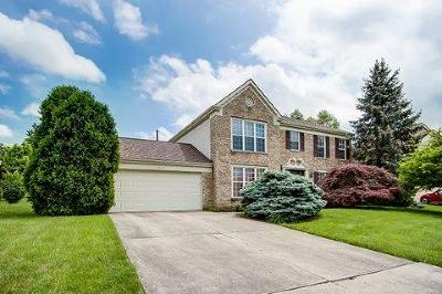 Colerain Twp Single Family Home For Sale: 9945 Voyager Lane