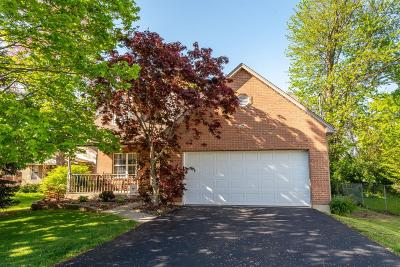 Blue Ash Single Family Home For Sale: 4606 Cooper Road