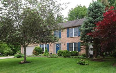 Single Family Home For Sale: 3464 Winter Holly Drive