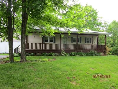 Adams County, Brown County, Clinton County, Highland County Single Family Home For Sale: 12807 Fort Hill Road
