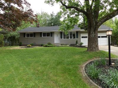 Single Family Home For Sale: 6989 Fields Ertel Road