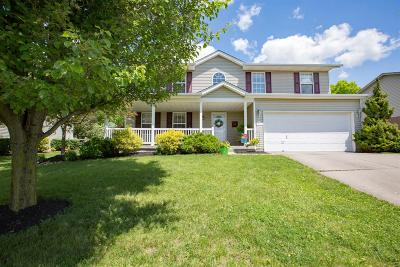 Warren County, Clermont County, Hamilton County, Butler County Single Family Home For Sale: 3662 Treadway Trail