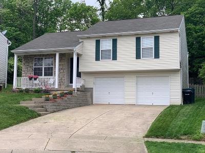 Cincinnati Single Family Home For Sale: 992 Venetian Terrace