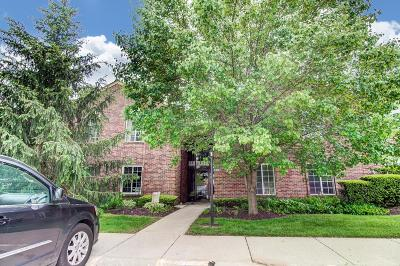 Green Twp Condo/Townhouse For Sale: 5201 S Eaglesnest Drive #97