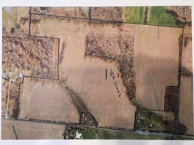 Clinton County Residential Lots & Land For Sale: McKibben Road