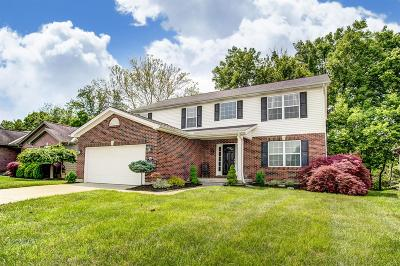 Single Family Home For Sale: 4027 Blue Springs Drive