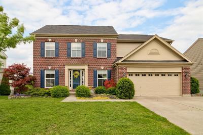 Hamilton Single Family Home For Sale: 1076 Arbor Springs Drive