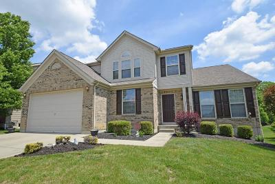 Clermont County Single Family Home For Sale: 4106 Roland Creek Drive
