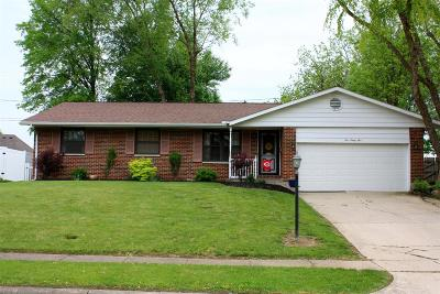 Clinton County Single Family Home For Sale: 1095 Peggy Lane