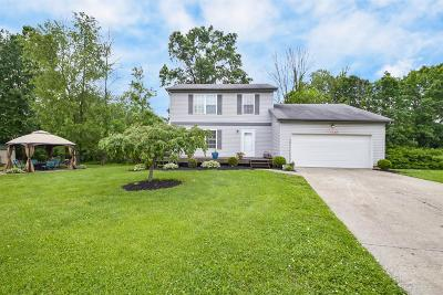 Single Family Home For Sale: 1048 Pear Tree Lane