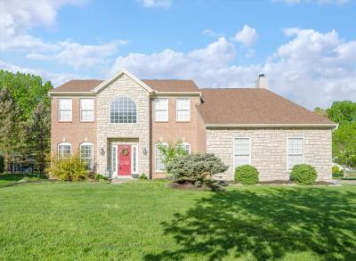 Single Family Home For Sale: 4179 Oak Tree Court