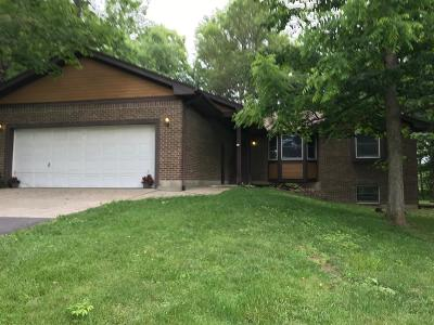 Adams County, Brown County, Clinton County, Highland County Single Family Home For Sale: 228 Harland Drive