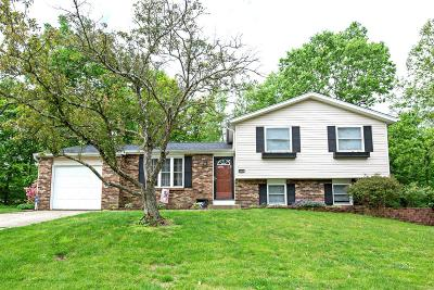 Clermont County Single Family Home For Sale: 4641 Blackberry Lane