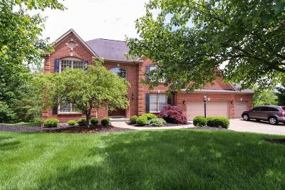 Hamilton County Single Family Home For Sale: 9290 Johnston Lane