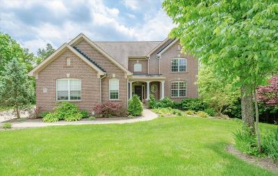 Turtle Creek Twp Single Family Home For Sale: 2243 N Triple Creek Court