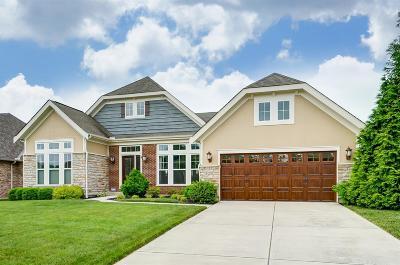 Hamilton County Single Family Home For Sale: 10169 Elmfield Drive