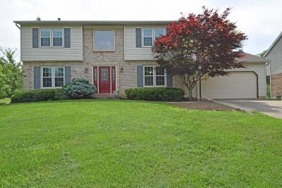 Cincinnati Single Family Home For Sale: 940 Watch Creek Drive