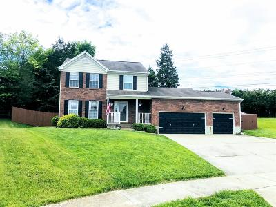 Lebanon Single Family Home For Sale: 272 Triple Crown Drive