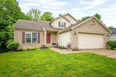 Loveland Single Family Home For Sale: 9128 Stony Creek Court