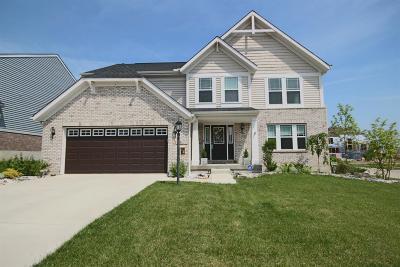 Springboro Single Family Home For Sale: 108 Willow Grove