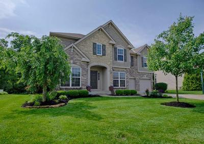 Clermont County Single Family Home For Sale: 4067 Woodsly Drive